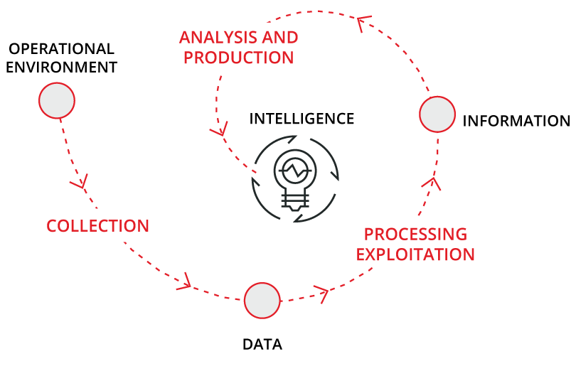 Intelligence Creation Processes