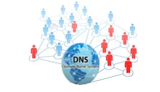 Botnet detection through DNS-based approaches